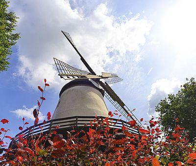 Blick auf die Windmühle in Glandorf