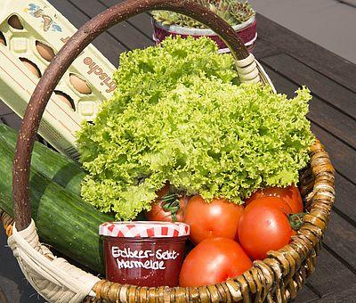 Picknickkorb mit leckeren Produkten
